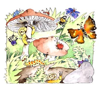 Mushrooms With Bugs by  Cornelia Funke - Masterpiece Online