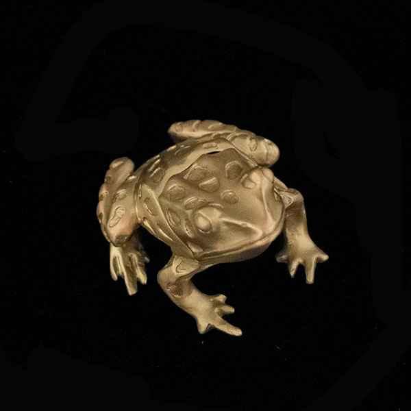 Leopard Frog Box, Antique Bronze