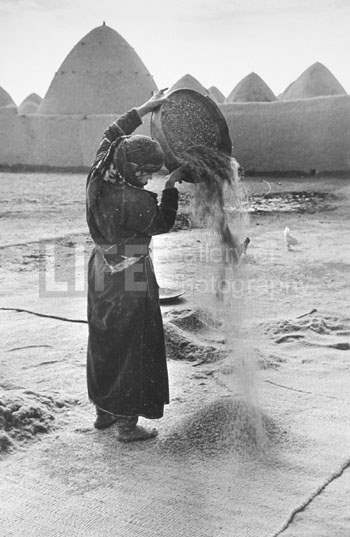 Bedouin Woman sifting... by  Alfred Eisenstaedt - Masterpiece Online