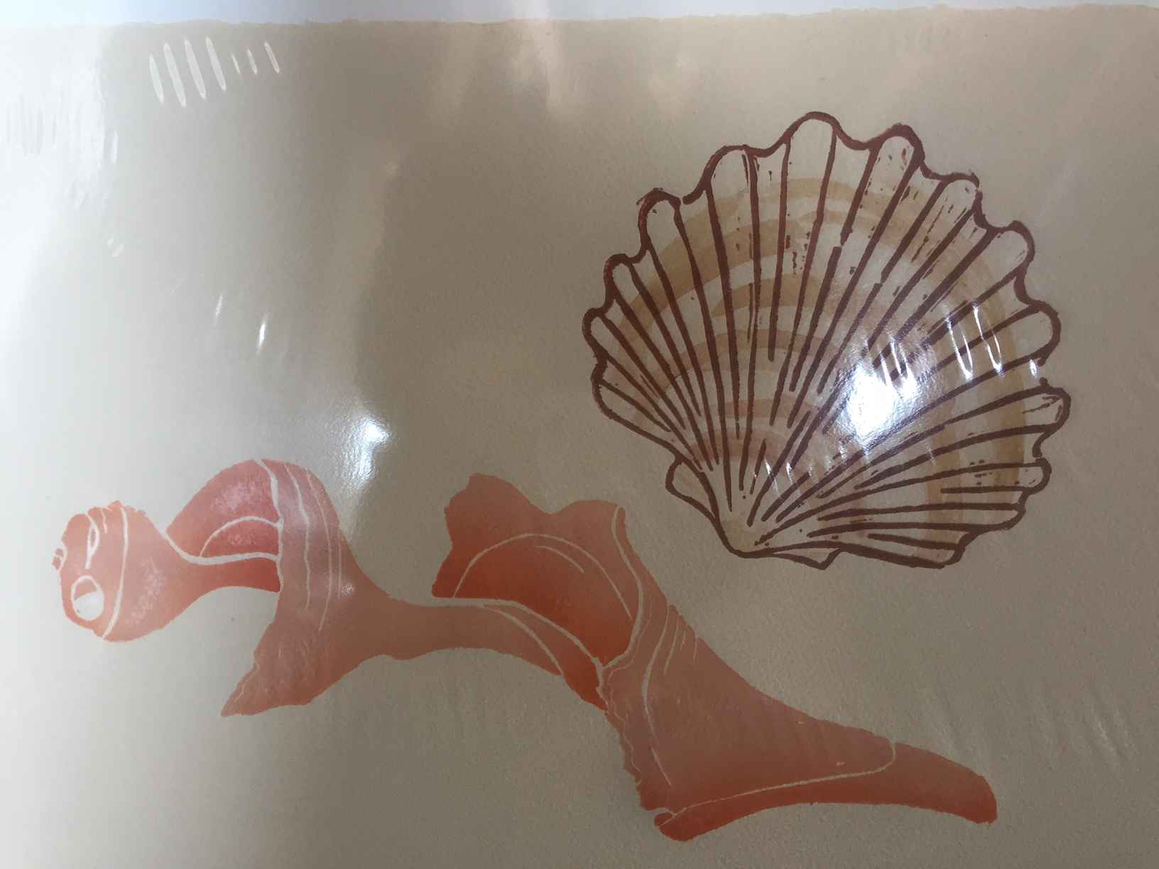 Scallops and Whelk 1/... by  Sheila M. Fane - Masterpiece Online
