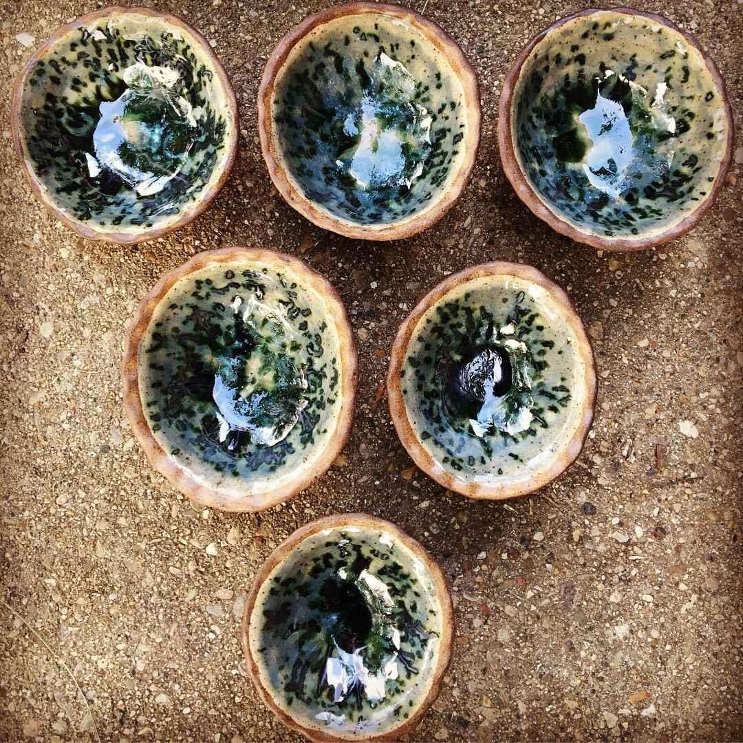 Turtle Bowl by  Heather Hansen - Masterpiece Online