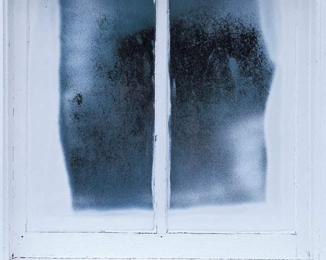 Window, Whidbey Islan... by  Alison Shaw - Masterpiece Online