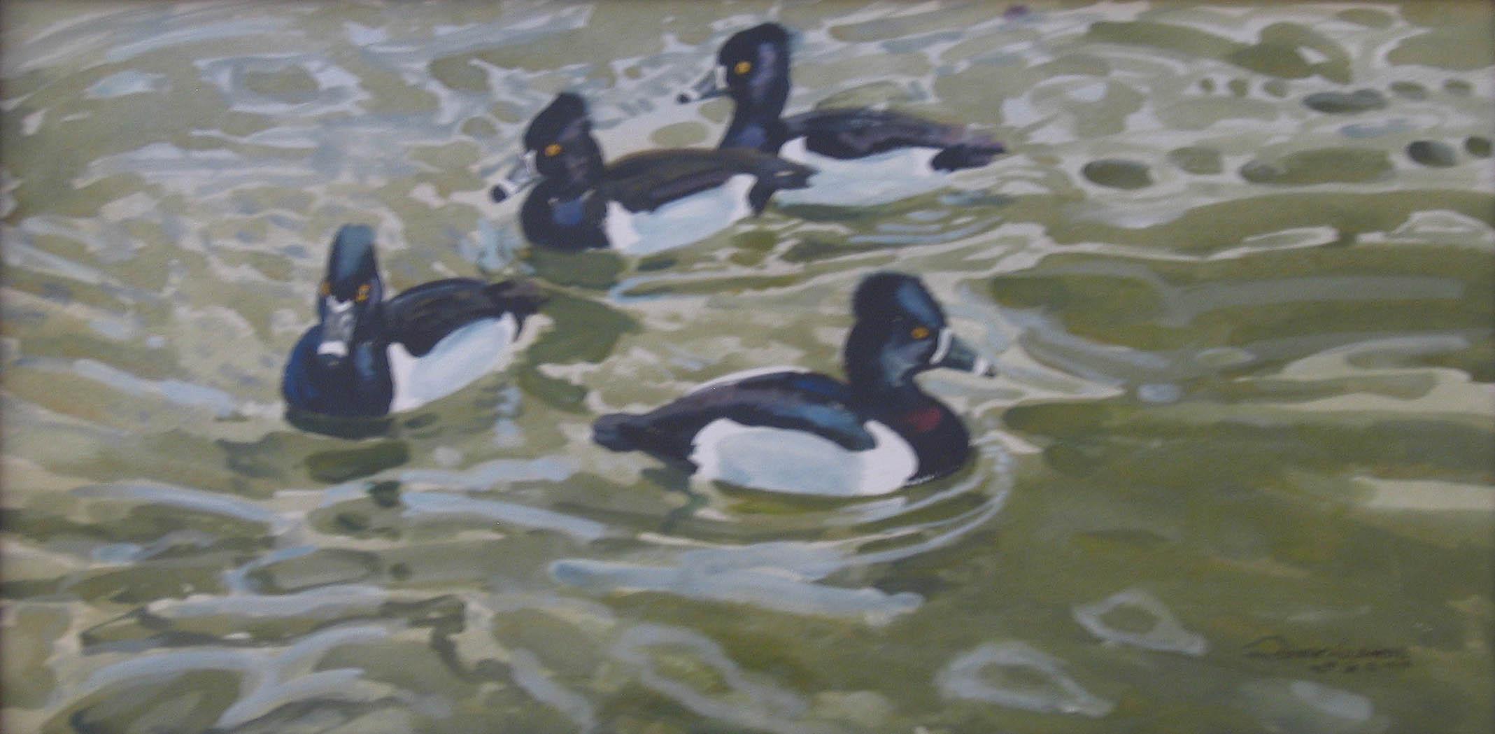 Ring Necked Ducks by  Robert Lougheed - Masterpiece Online