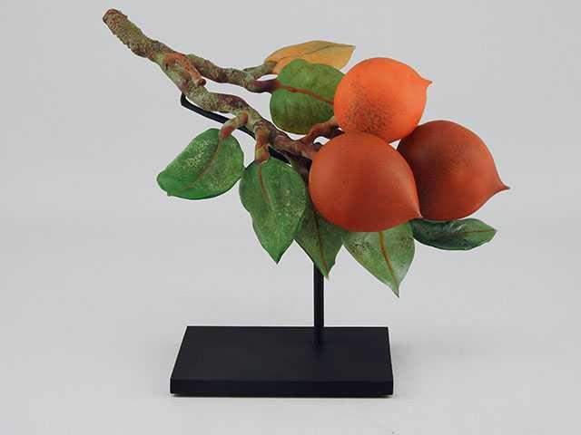 Persimmons by  Kathleen Elliot - Masterpiece Online