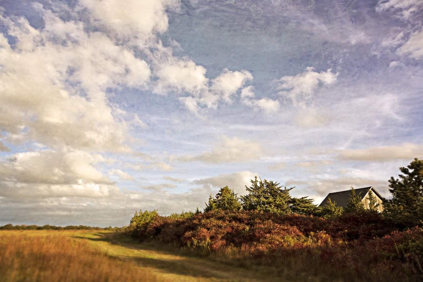 Autumn Sunset II, 2013 by  Michael Stimola - Masterpiece Online