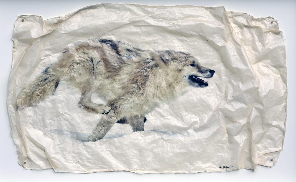 Snow Sprint by  Pete Zaluzec - Masterpiece Online