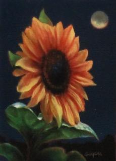 Sunflower/Night Sky