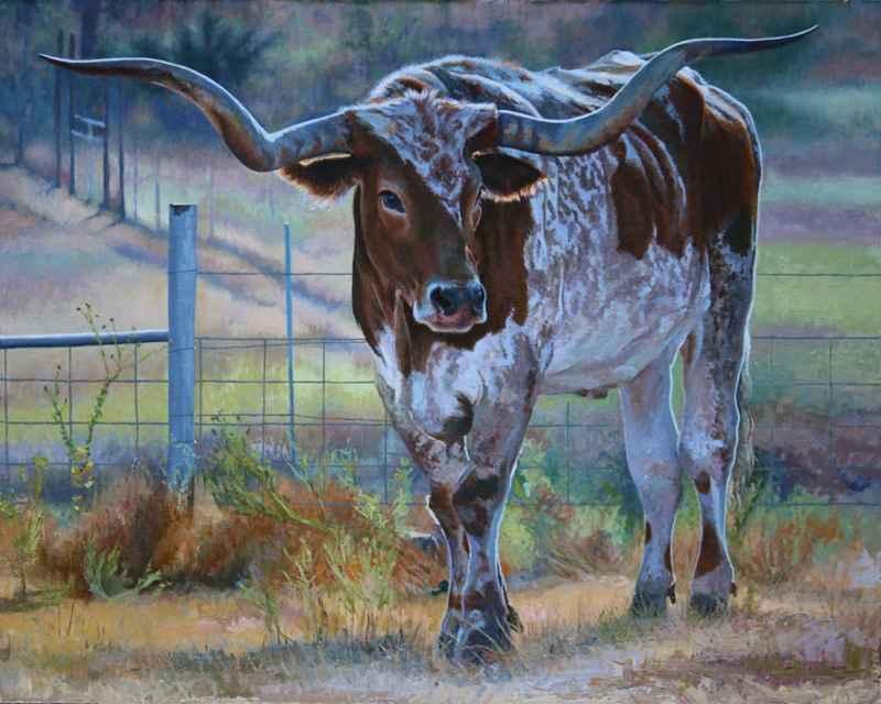 Bull's Eye by  Kim Hill - Masterpiece Online