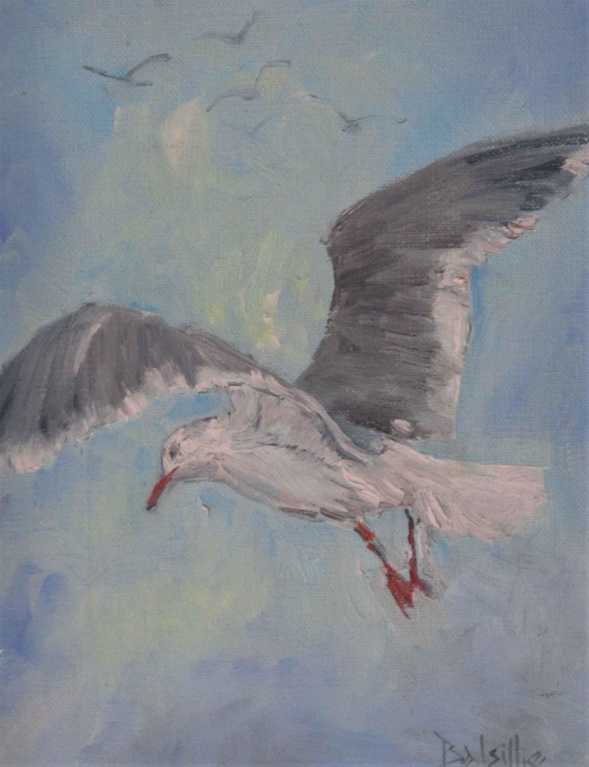 Unknown (Seagull) by  Loraine Balsillie - Masterpiece Online