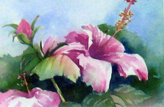 Pink Hibiscus by Ms. Margaret Rodriguez - Masterpiece Online