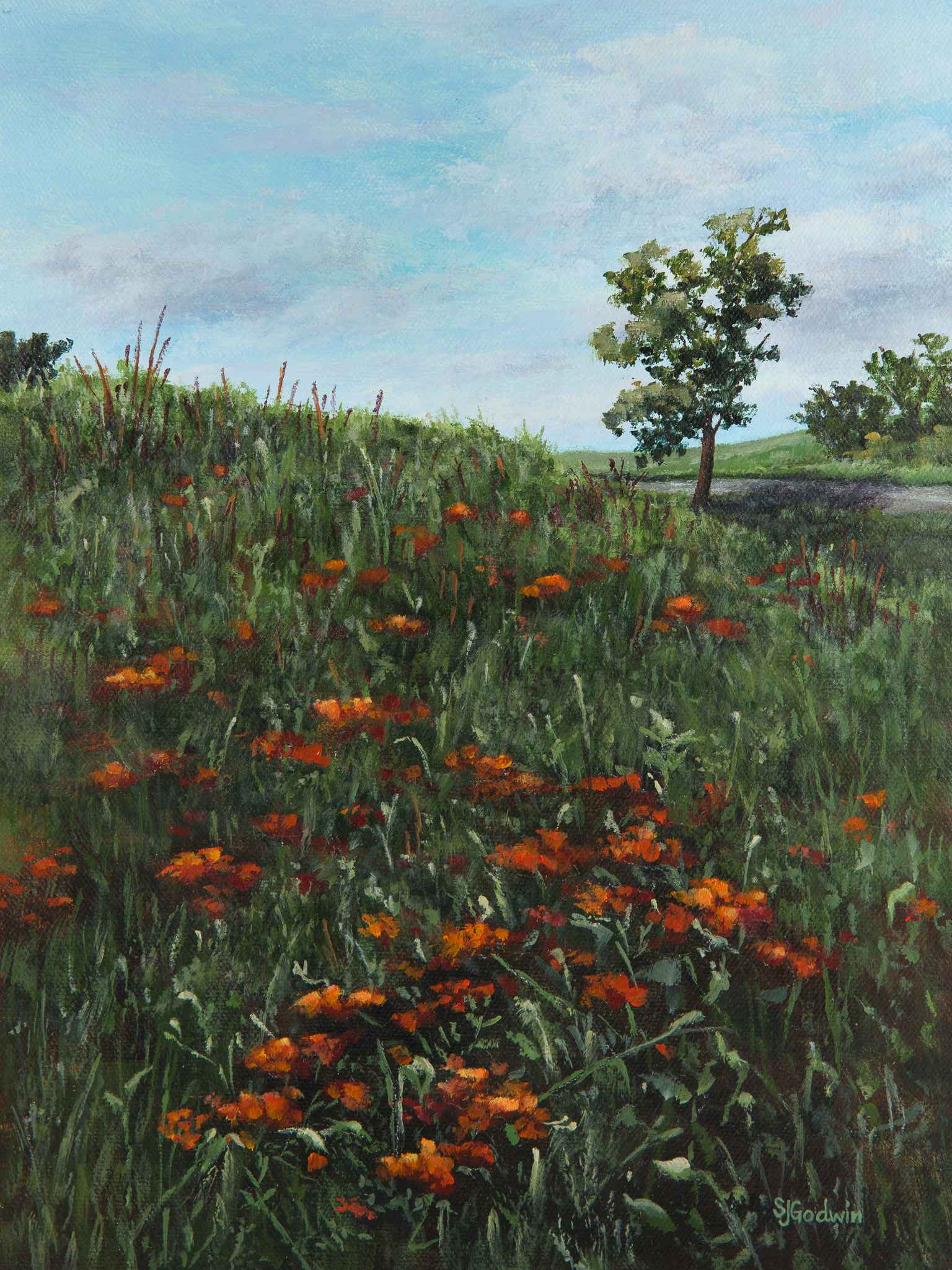 A Butterfly's Dream by  Sue Godwin - Masterpiece Online