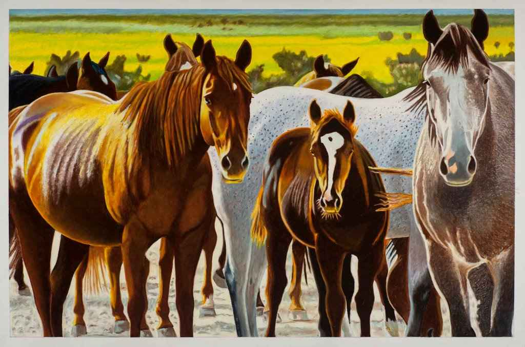 T-Cross Mares On Moun... by  Don Coen - Masterpiece Online