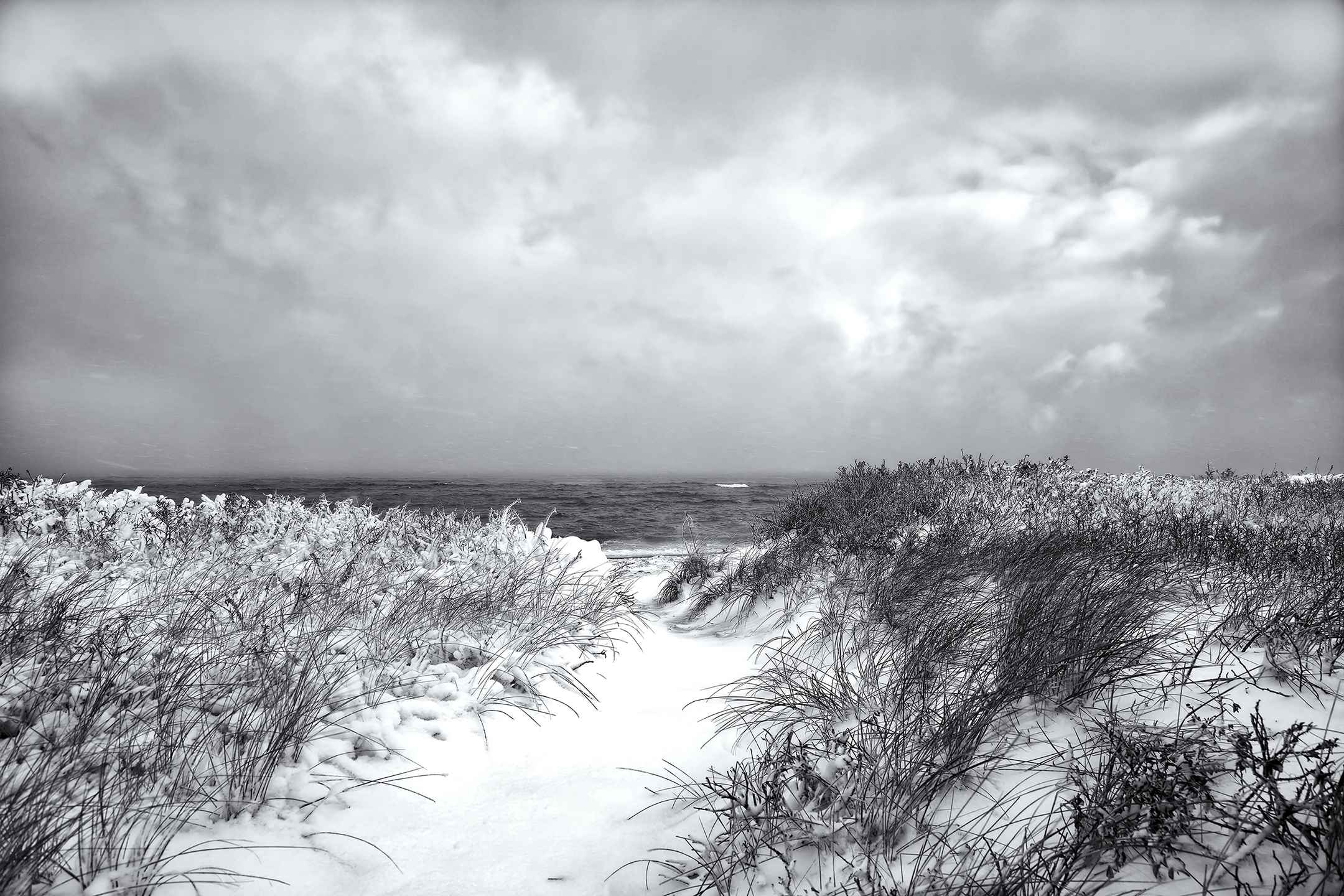 Winter Wave, 2016 by  Michael Stimola - Masterpiece Online