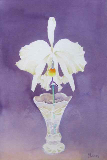 White Cattleya in Cry... by  John Thomas (1927-2001) - Masterpiece Online