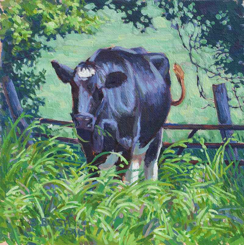 Cow Study 4 by  Stephanie Bush - Masterpiece Online