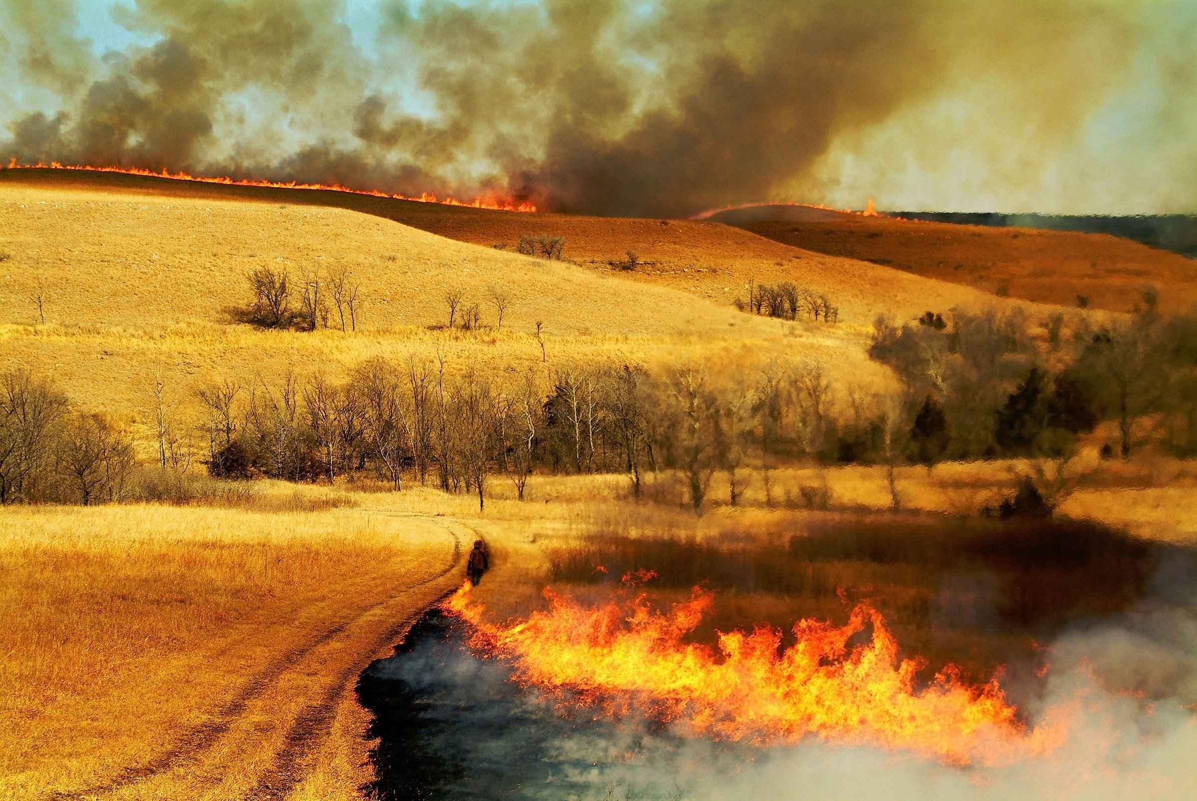 Trail Blazing by  Edward Sturr - Masterpiece Online