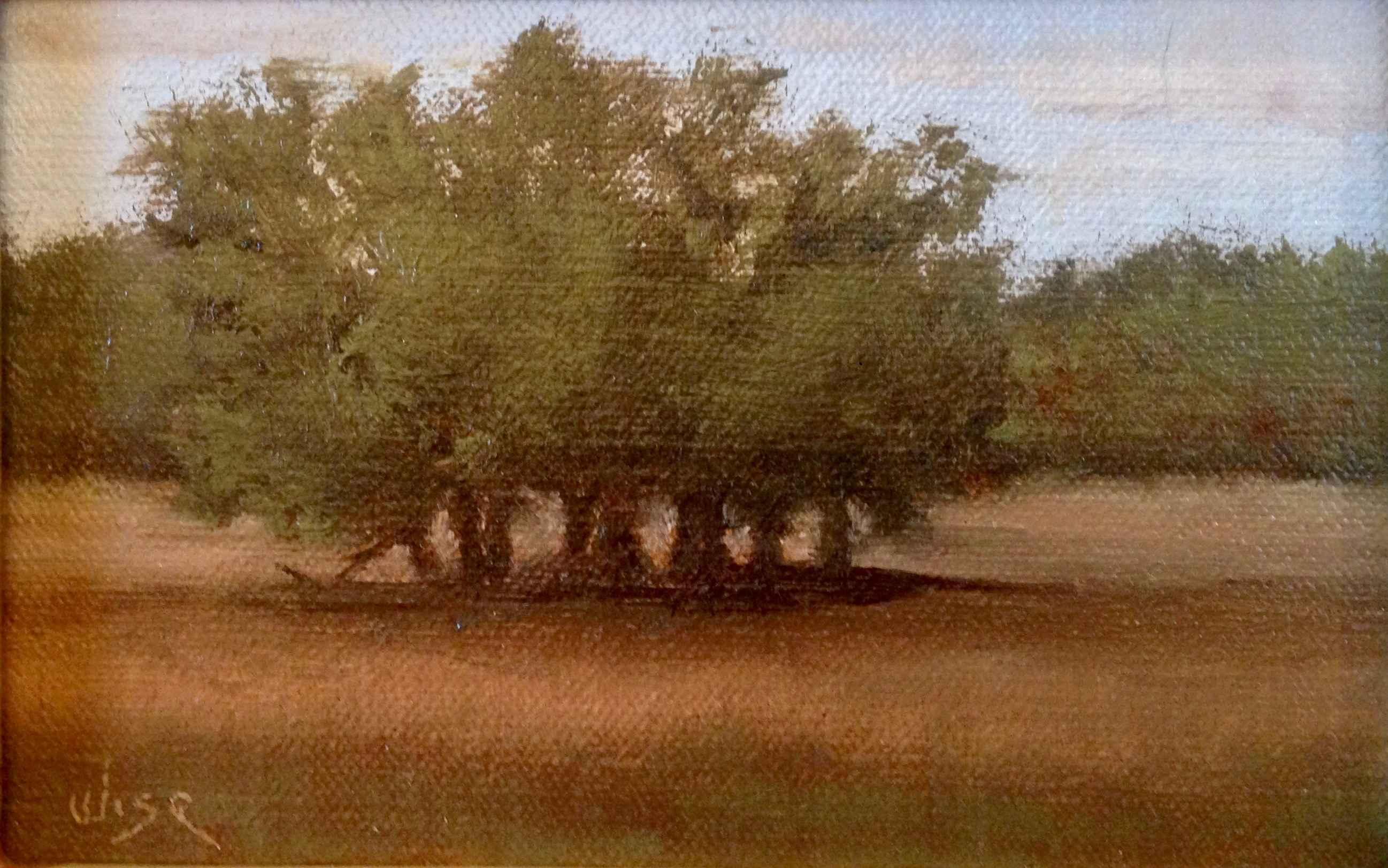 Oak Mot by  Marie Figge Wise - Masterpiece Online