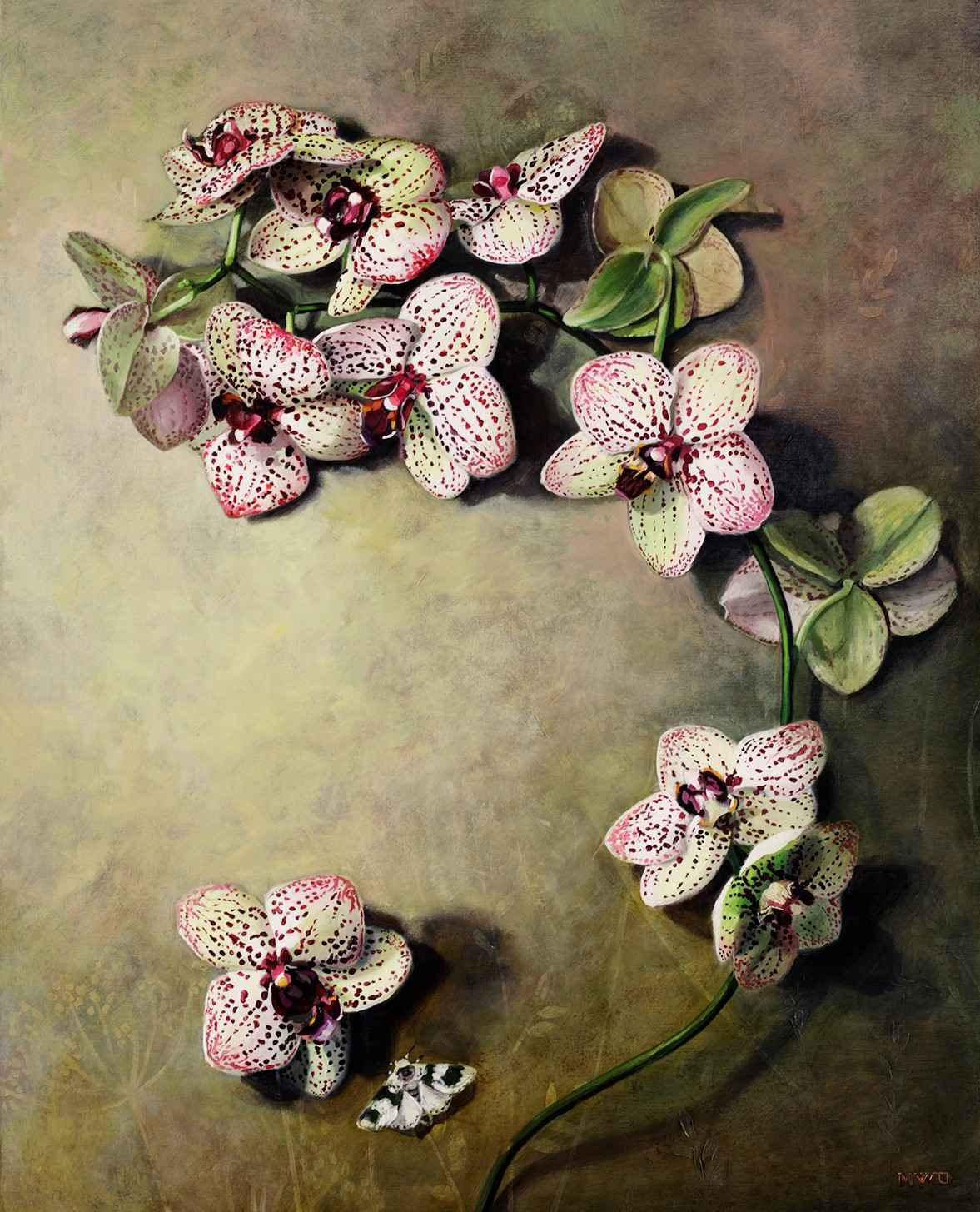 Orchids Arching