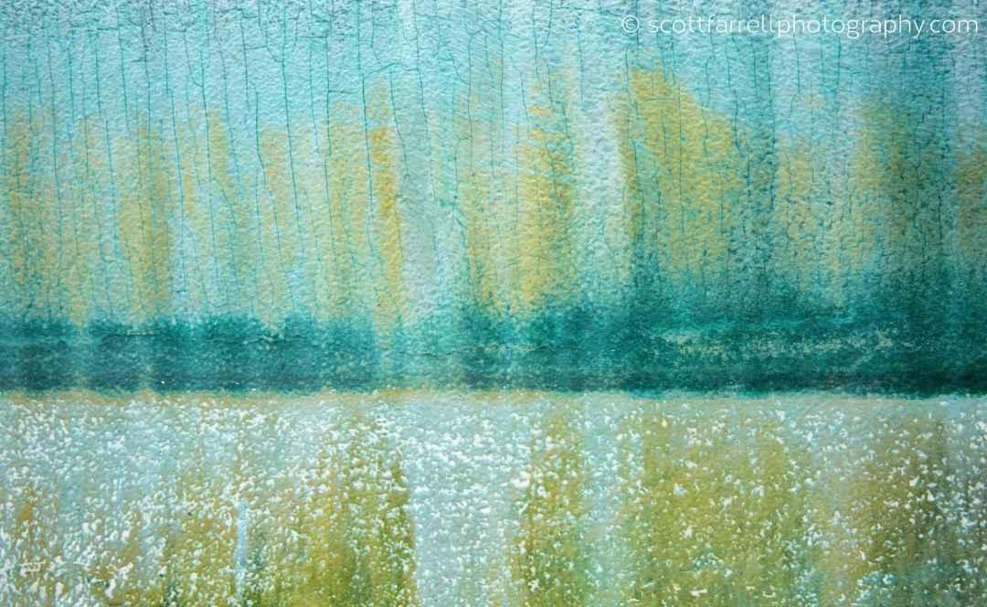 Field of Daisies by  Scott Farrell - Masterpiece Online