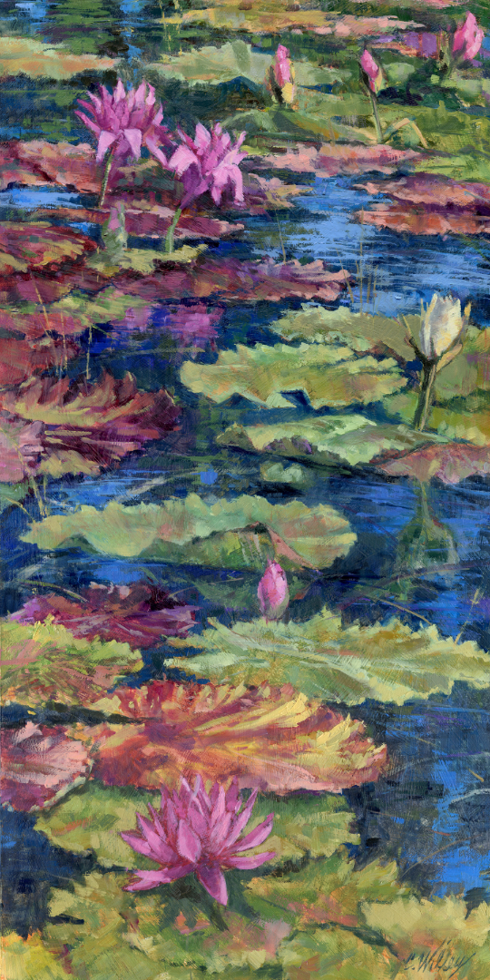 Trail of Waterlilies by  Chris Willey - Masterpiece Online