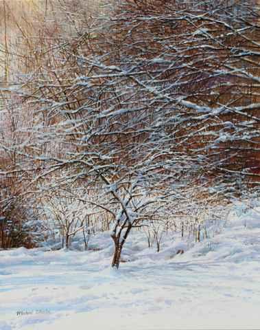 Plum Tree - January S...