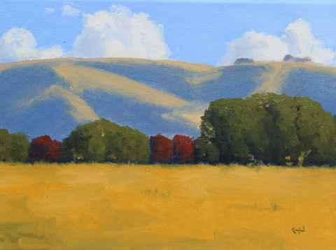 California Gold  by  Donald  Craghead