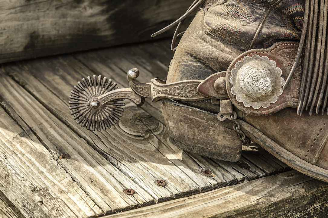 Cowgirl Accoutrements  by  Teresa Grove