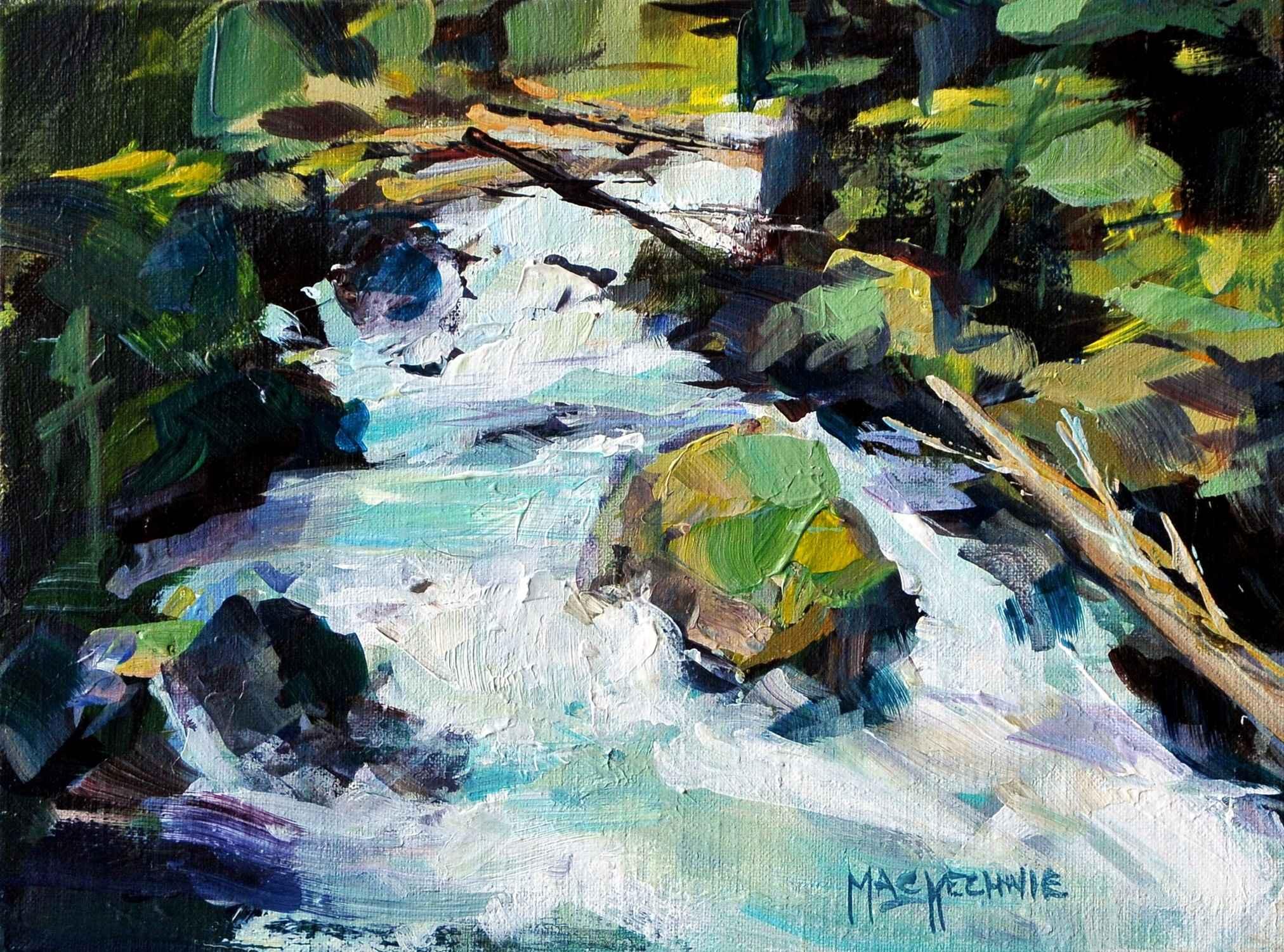 Steven's Pass Waterfa...  by  Joe Mac Kechnie