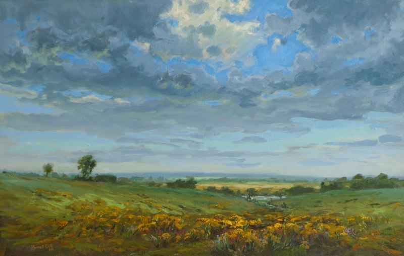 Wildflowers After the... by  JR Cook - Masterpiece Online