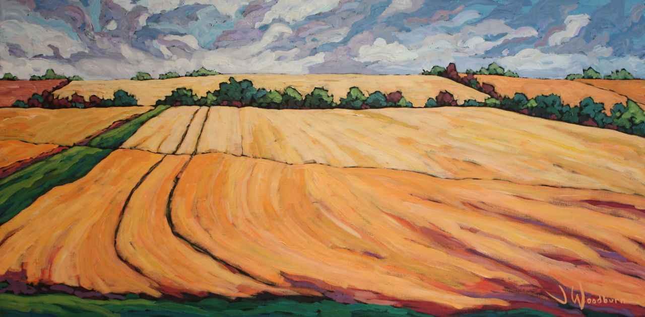 Fields of Gold by Ms Jennifer Woodburn - Masterpiece Online
