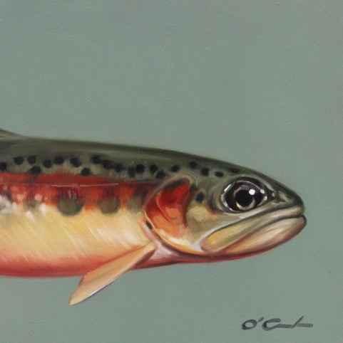 Golden Trout #1  by  Jennifer O'Cualain