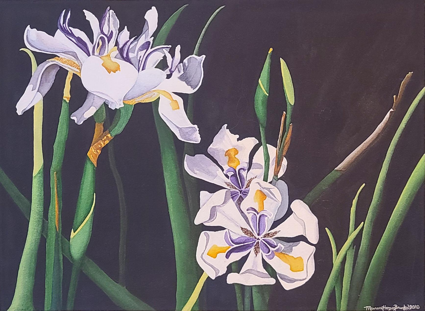 Daylilies 1 by  Maureen Henson-Brunke - Masterpiece Online