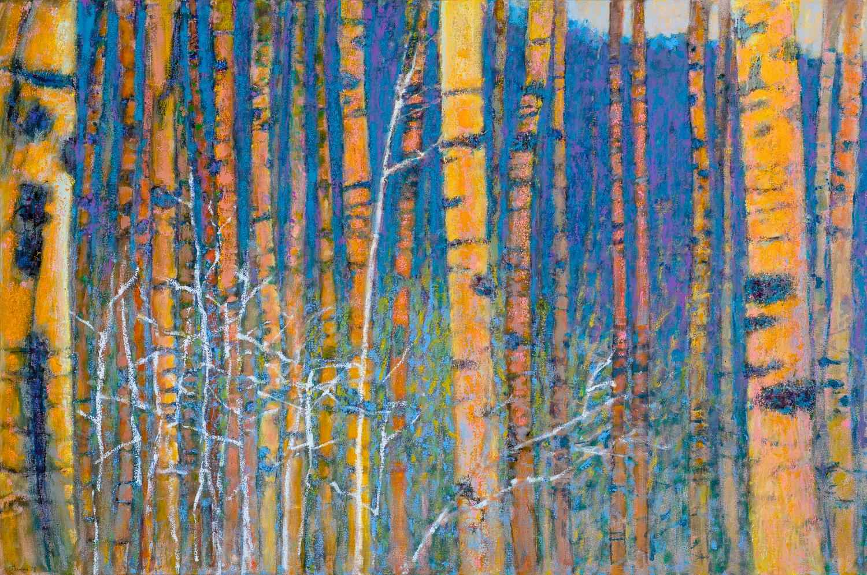Aspen Vista, Winter