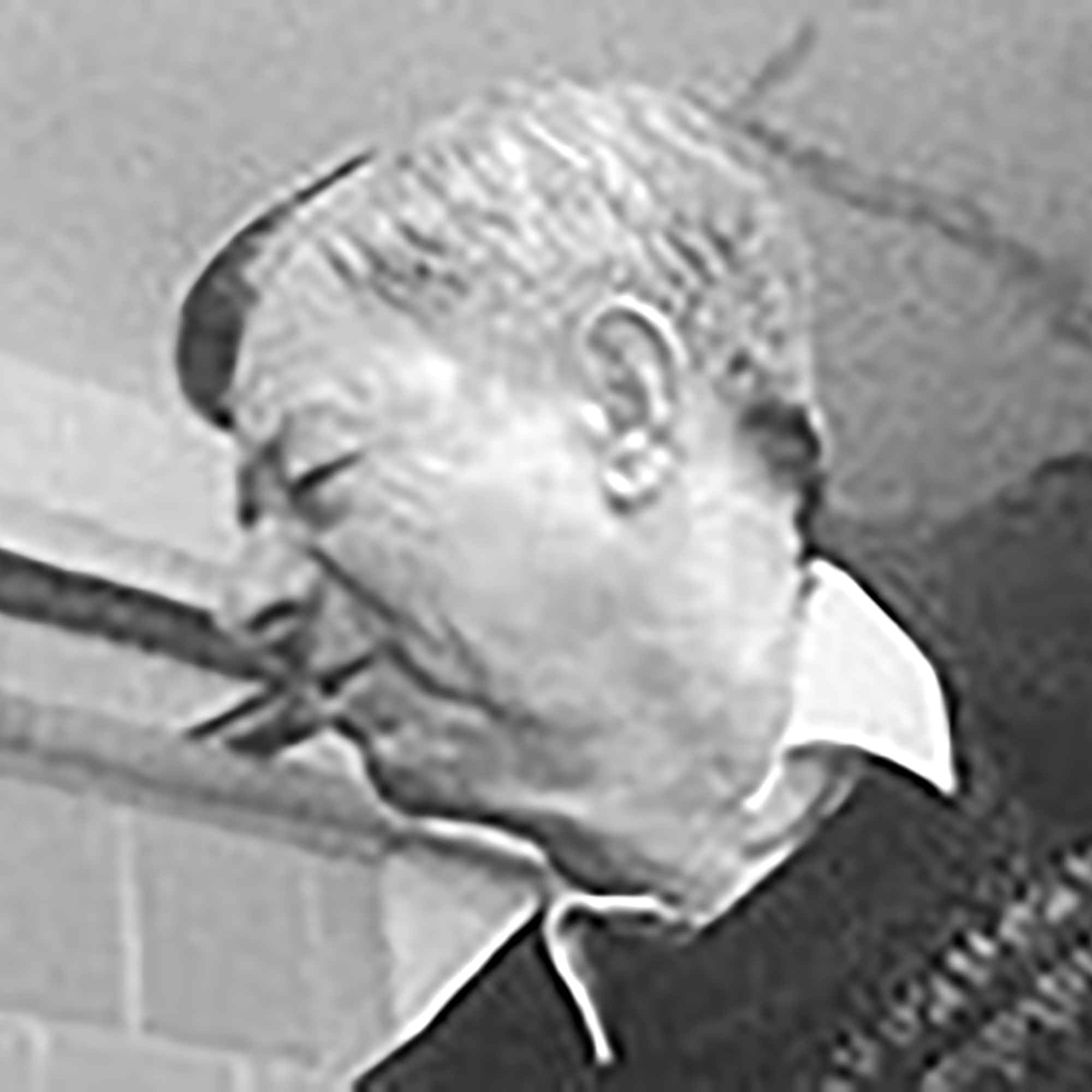 Peter Schettler