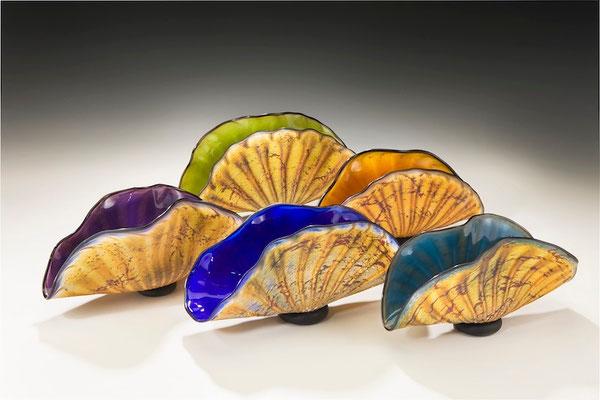 Primitive Shell, Small