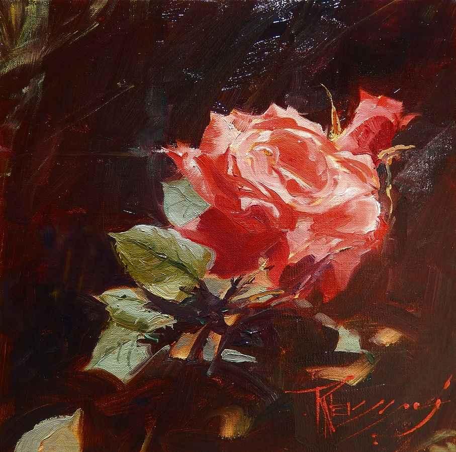 Rose Light  by  Robin Weiss