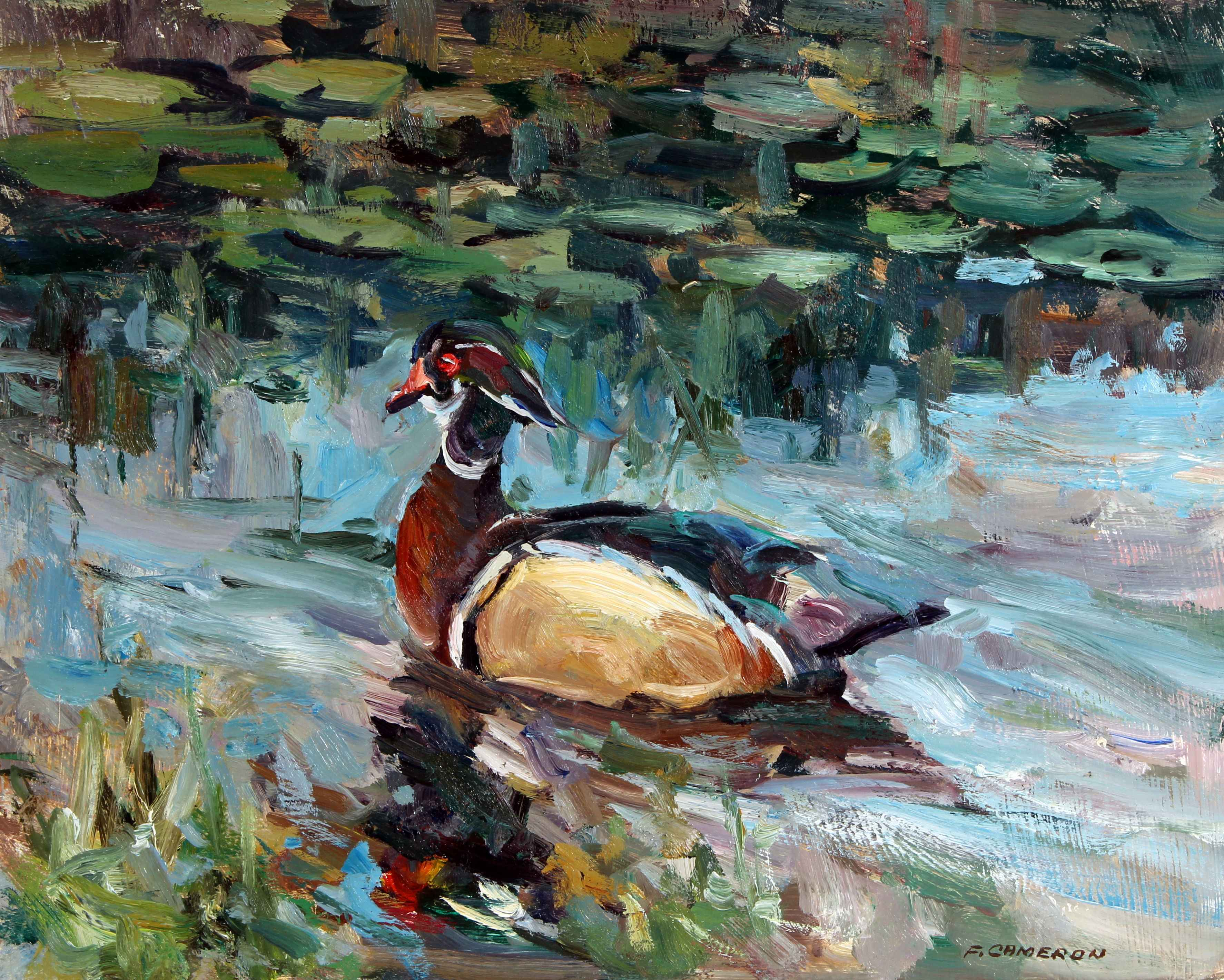 Wood Duck  by  Fred Cameron