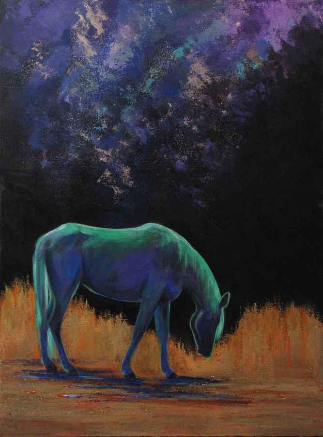 Party Under Northern ... by MS Julia Lucich - Masterpiece Online