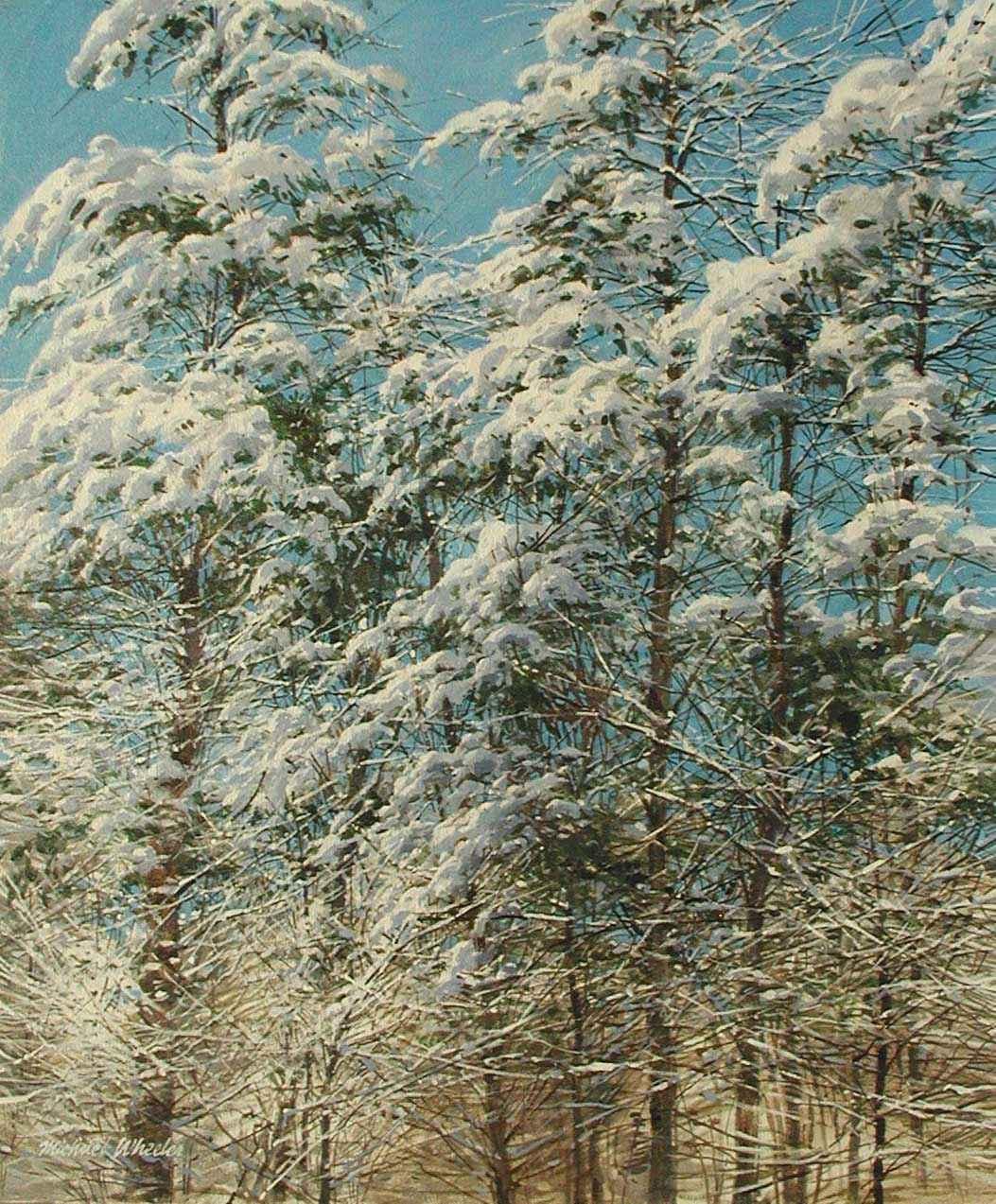 Wet Snow in the Pine ... by  Michael Wheeler - Masterpiece Online