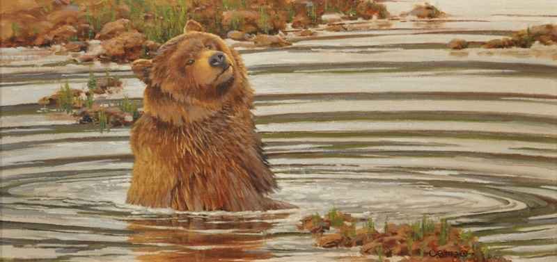 Bear, Bath and the Po...  by  John Potter