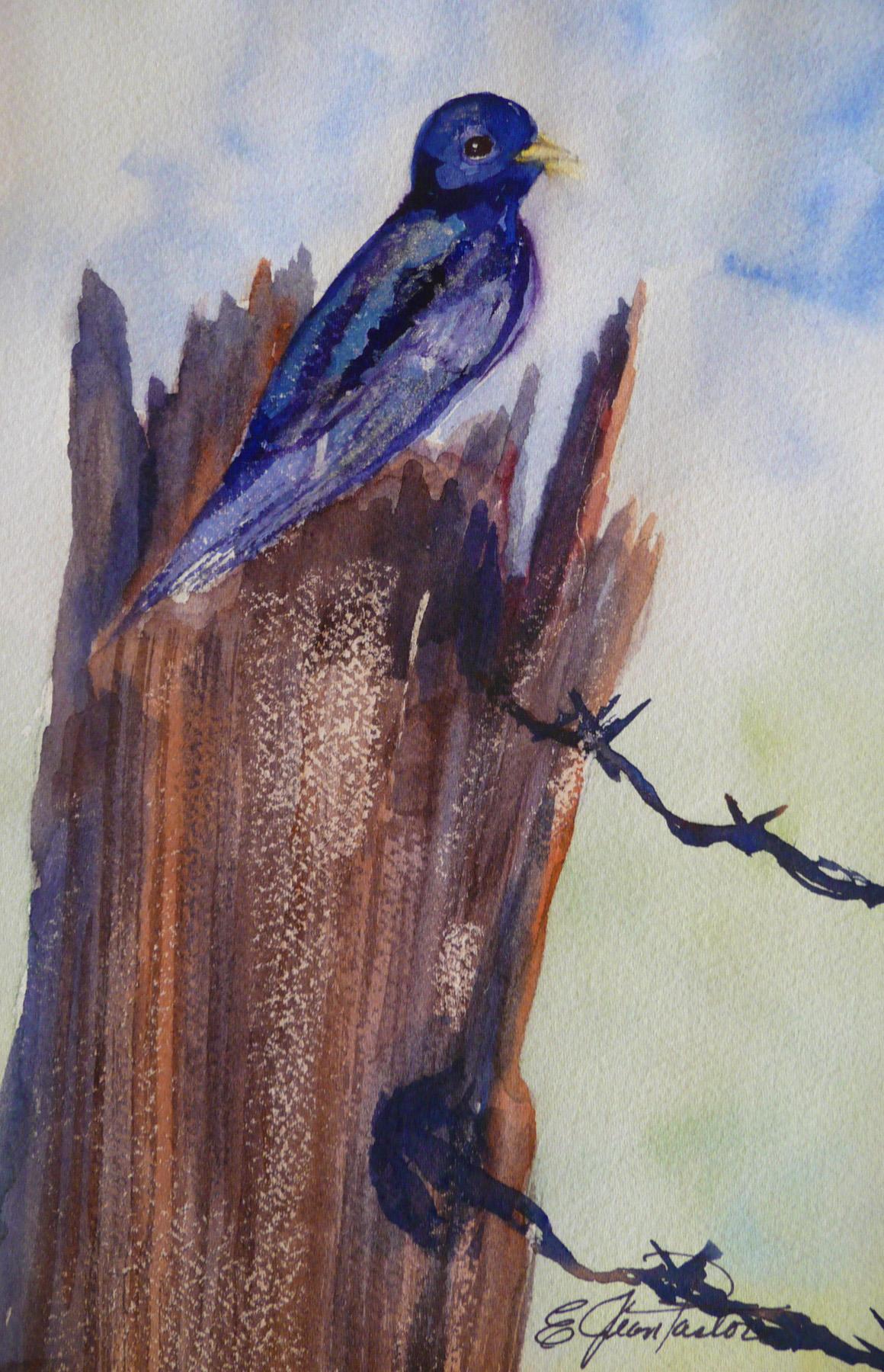 PURPLE MARTIN by  Jean Pastore - Masterpiece Online