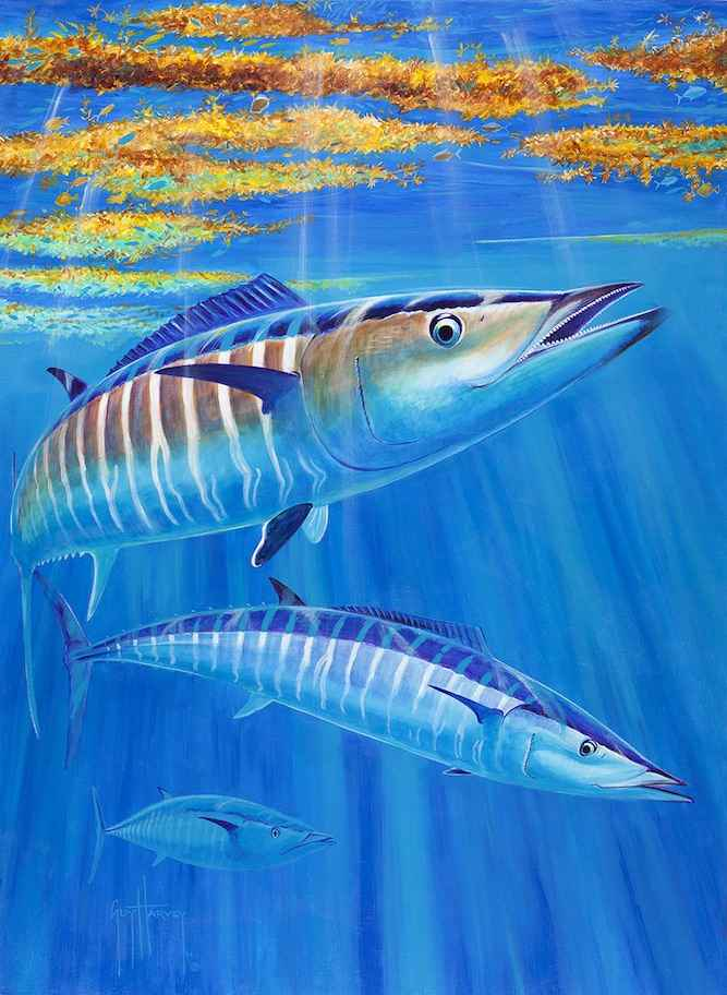 Hoo's Under the Weed ... by  Guy Harvey - Masterpiece Online