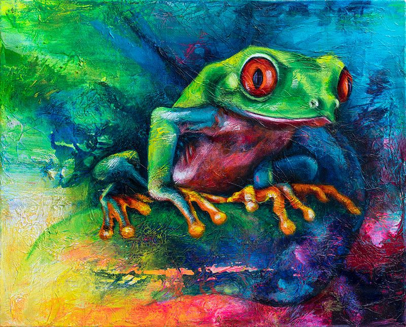 Red Eye Tree Frog 2 by  Sian Pampellonne - Masterpiece Online