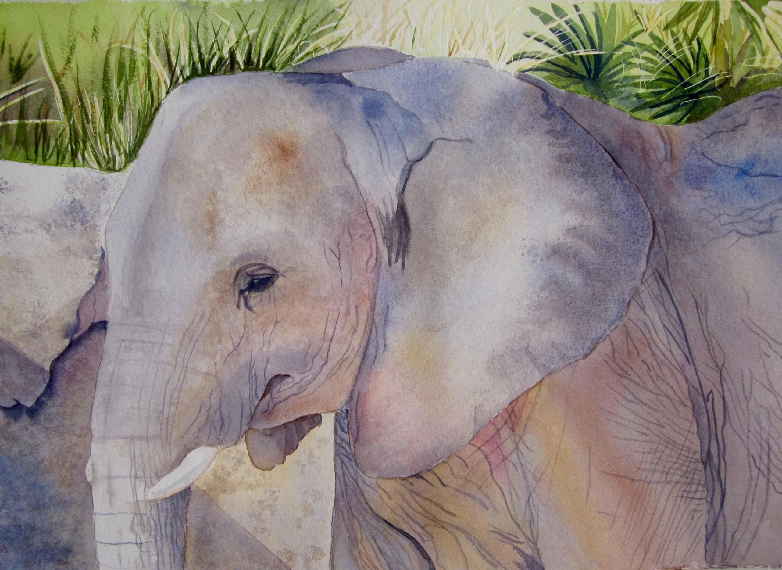 Semba by  Carolyn Streed - Masterpiece Online