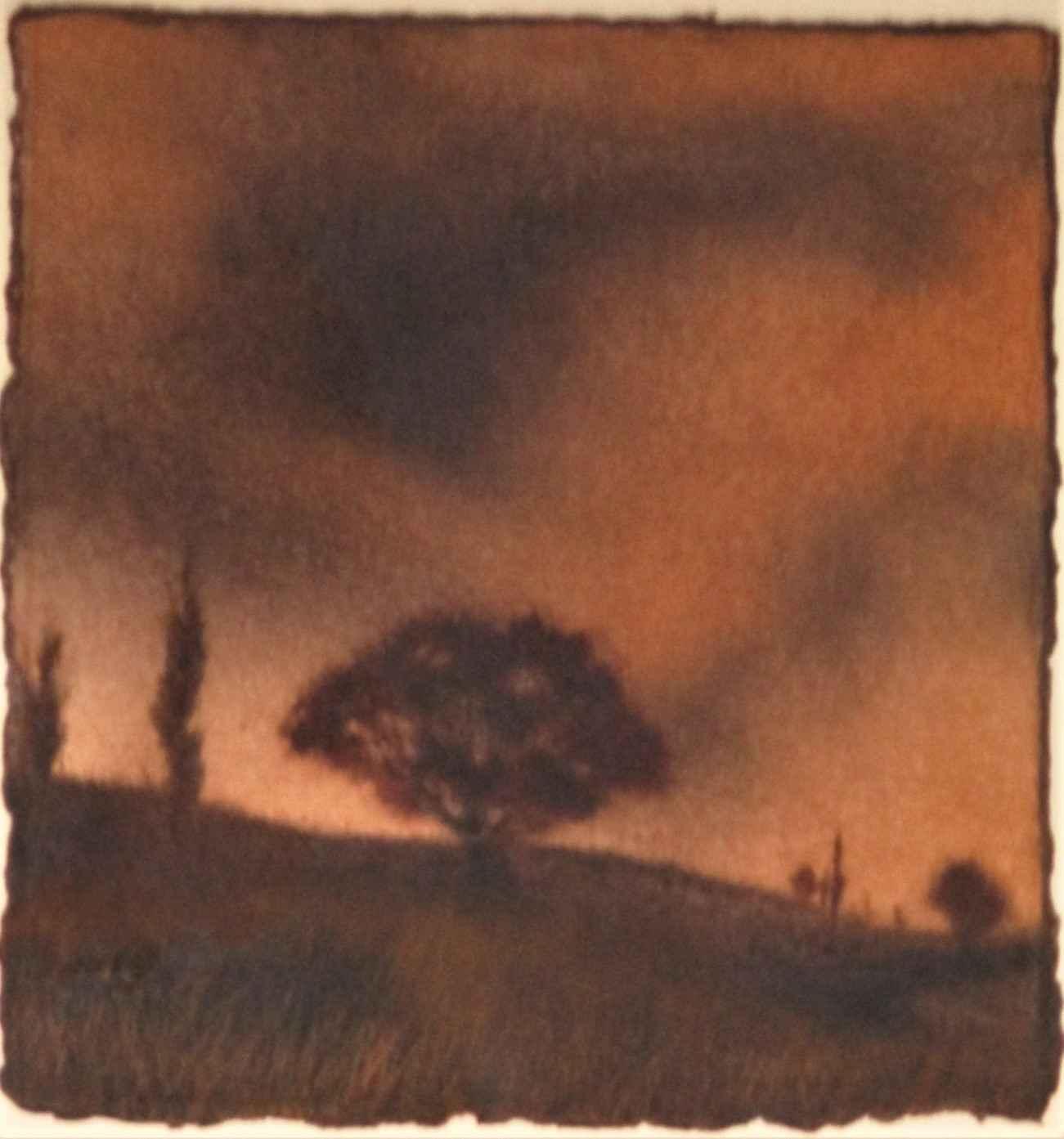 Unknown ( Tree on hil... by  Scott C. Johnson - Masterpiece Online
