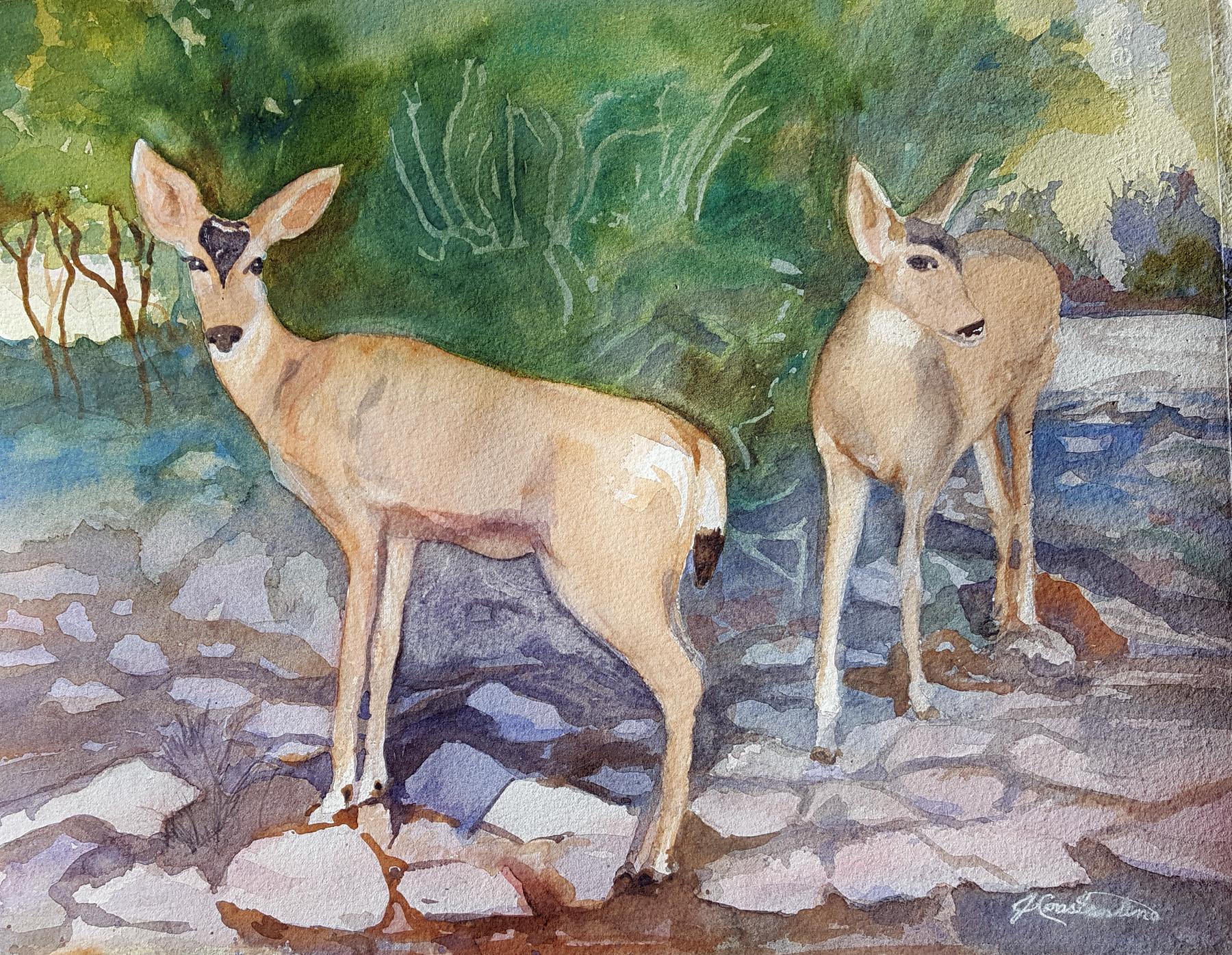 Mule Deer in the Hood by  Judy Constantine - Masterpiece Online