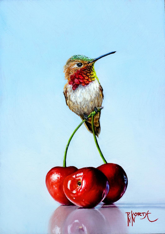 Rufous & Cherries