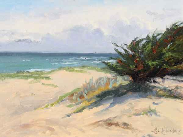 After the Storm by  Sally  Jordan - Masterpiece Online