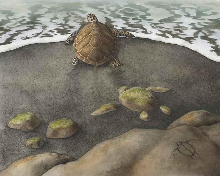 Three Honu by  Kirsten Carlson - Masterpiece Online