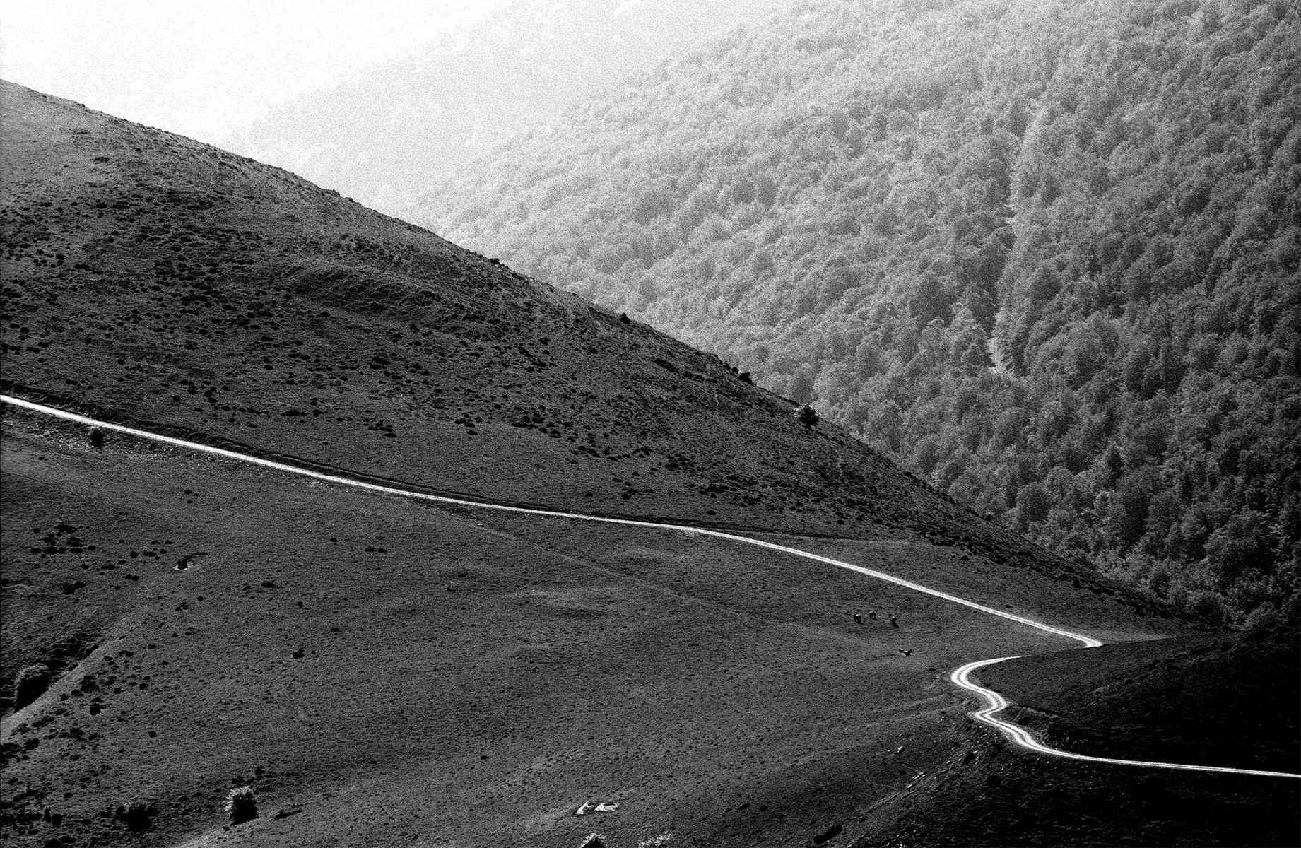 Route Napoleon, Camin...